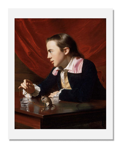 John Singleton Copley, A Boy with a Flying Squirrel (Henry Pelham)