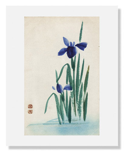 MFA Prints archival replica print of Irises from the Museum of Fine Arts, Boston collection.