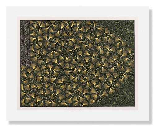 MFA Prints archival replica print of Jacques Hnizdovsky, Autumn Ginkgo Leaves from the Museum of Fine Arts, Boston collection.