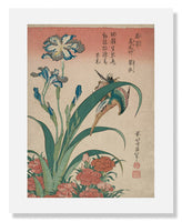 MFA Prints archival replica print of Katsushika Hokusai, Kingfisher with Iris and Wild Pinks from the Museum of Fine Arts, Boston collection.