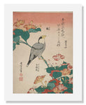 MFA Prints archival replica print of Katsushika Hokusai, Hawkfinch and Marvel of Peru from the Museum of Fine Arts, Boston collection.