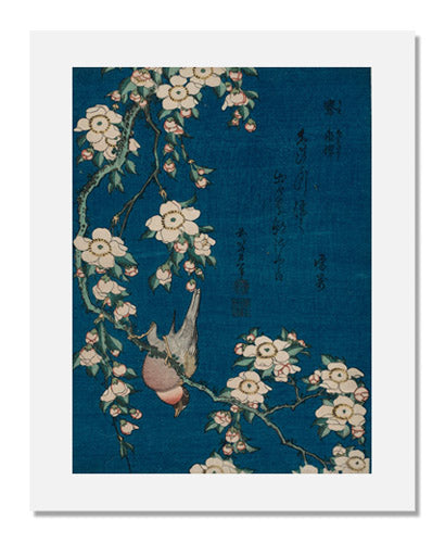 Katsushika Hokusai, Bullfinch and Weeping Cherry, from an untitled series known as Small Flowers
