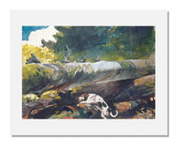 MFA Prints archival replica print of Winslow Homer, Hunting Dog among Dead Trees from the Museum of Fine Arts, Boston collection.