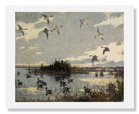 MFA Prints archival replica print of Frank Weston Benson, Pintails Decoyed from the Museum of Fine Arts, Boston collection.