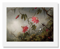 MFA Prints archival replica print of Martin Johnson Heade, Passion Flowers and Hummingbirds from the Museum of Fine Arts, Boston collection.