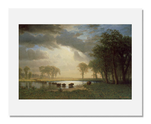 MFA Prints archival replica print of Albert Bierstadt, The Buffalo Trail from the Museum of Fine Arts, Boston collection.