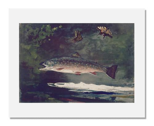 Winslow Homer, Trout Breaking