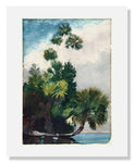 Winslow Homer, Palm Trees, Florida
