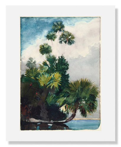 MFA Prints archival replica print of Winslow Homer, Palm Trees, Florida from the Museum of Fine Arts, Boston collection.