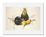Charles Demuth, Eggplants and Pears