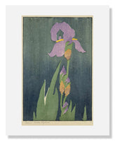MFA Prints archival replica print of Edna Boies Hopkins, Iris from the Museum of Fine Arts, Boston collection.