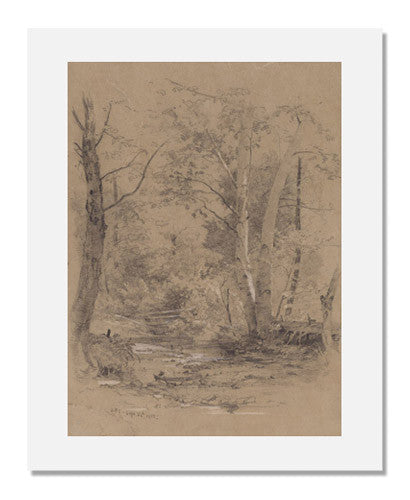 MFA Prints archival replica print of Jasper Francis Cropsey, Birch Trees Beside a Brook in the Woods, Conway, N.H. from the Museum of Fine Arts, Boston collection.