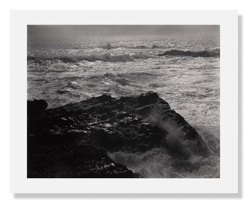 Edward Weston, Point Lobos