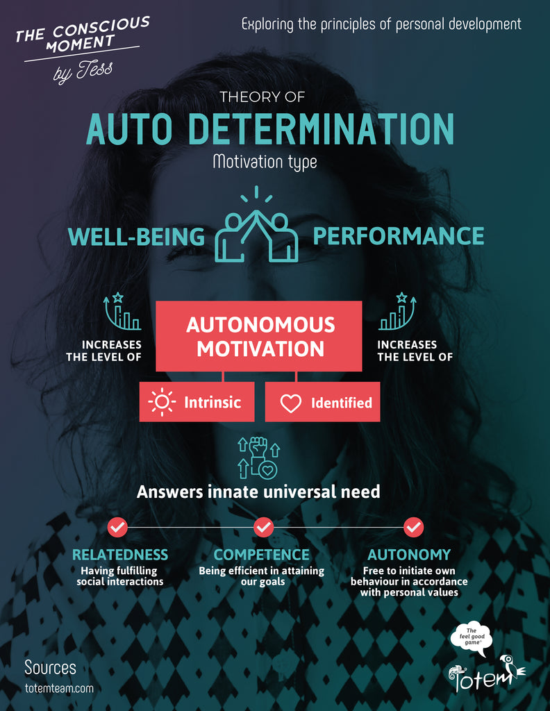 The Self Determination Theory (SDT) Infographic