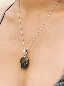 Ammonite Pendant - Earth's Elements
