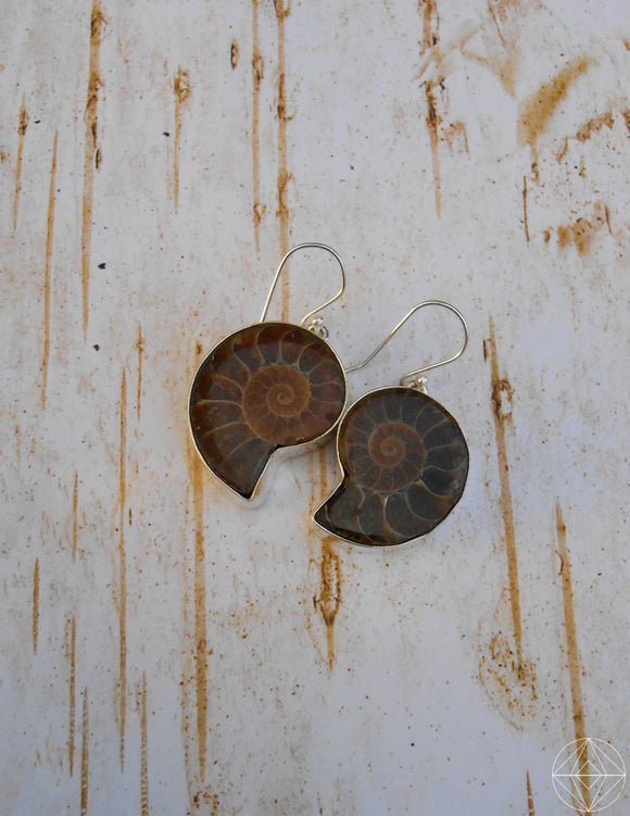 Ammonite & Sterling Earrings - Earth's Elements