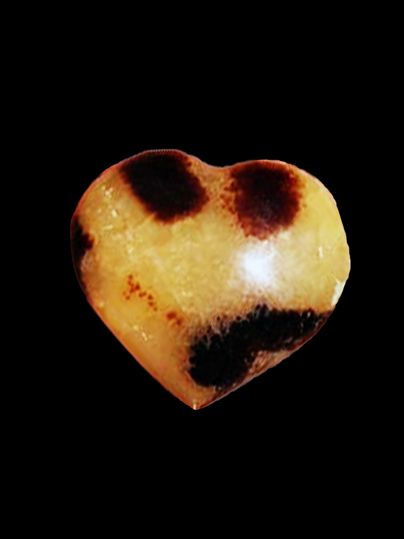 Septarian Heart - Earth's Elements