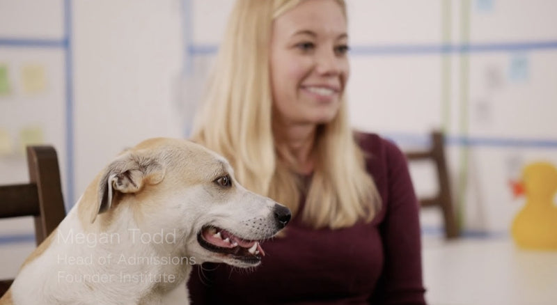 Dog Friendly Companies Increase Morale | Puppy Mama Interviews Founder Institute