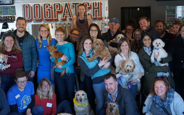 Pups + Brews at Harmonic Brewing - March 25, 2018