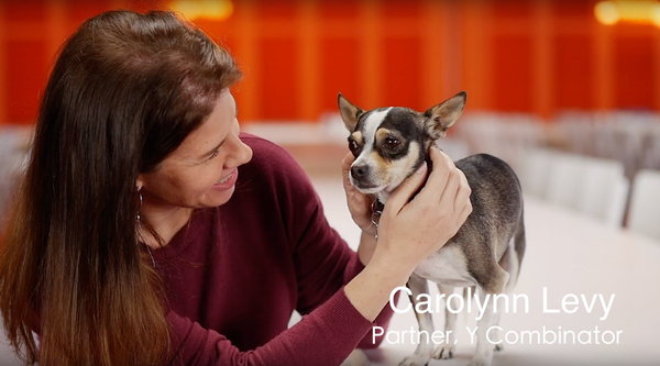 "Dogs ""should be welcomed everywhere"" -Carolynn Levy, Partner at Y Combinator"