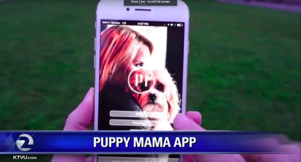 Use the Puppy Mama App to BRING YOUR BEST FRIEND WHEREVER YOU GO!