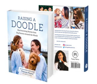 Raising a Doodle: Heartwarming Stories from Dog Parents Around the World