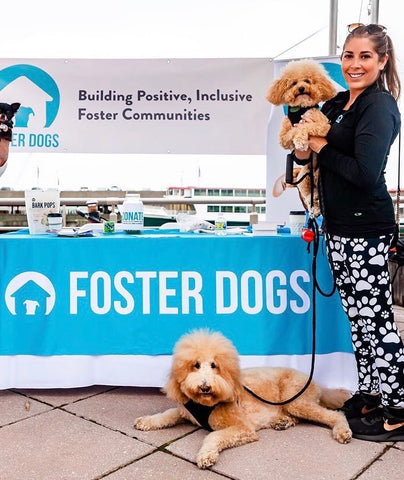 Paige, Charlie & Sawyer – Team Captains of Foster Dogs