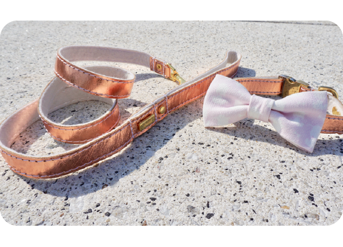 Puppy Leash: Rose Gold Leather