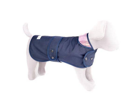 White Leather Dog Harness  - Soft, Durable Leather and Soft Wool Lining