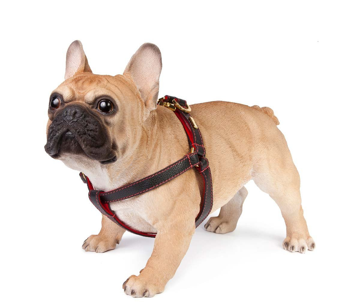 Black Leather Dog Harness  - Soft, Durable Leather and Soft Wool Lining