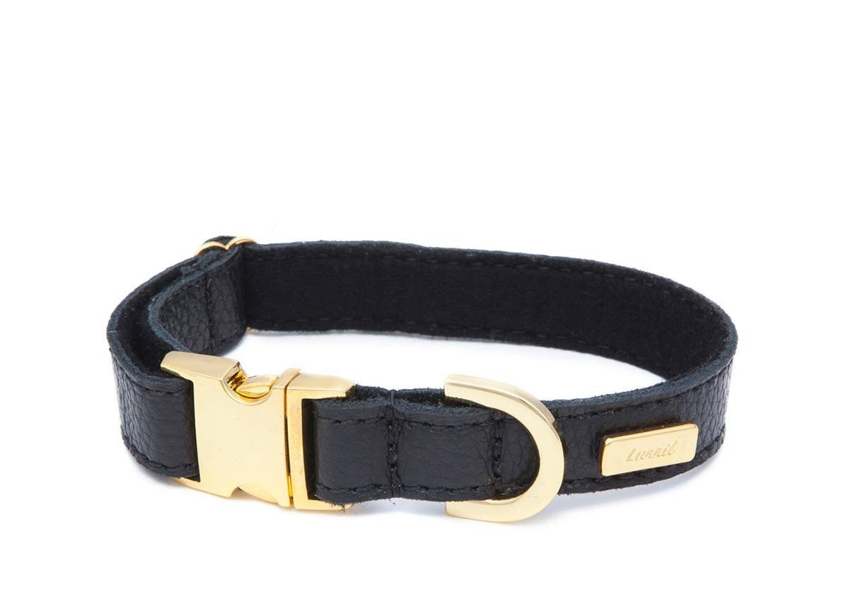 Black Leather Dog Collar for your Pug - Durable & Soft Leather and Soft Wool Lining