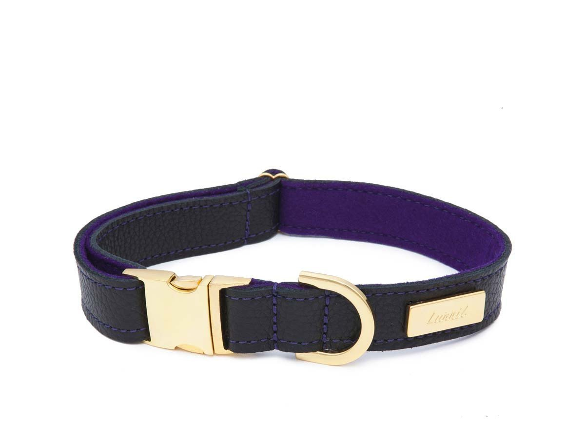 Black Leather Dog Collar for your Border Collie - Durable & Soft Leather and Soft Wool Lining