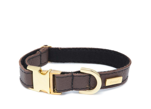 Dog Collar, Leash & Harness in Chocolate Brown Soft Leather