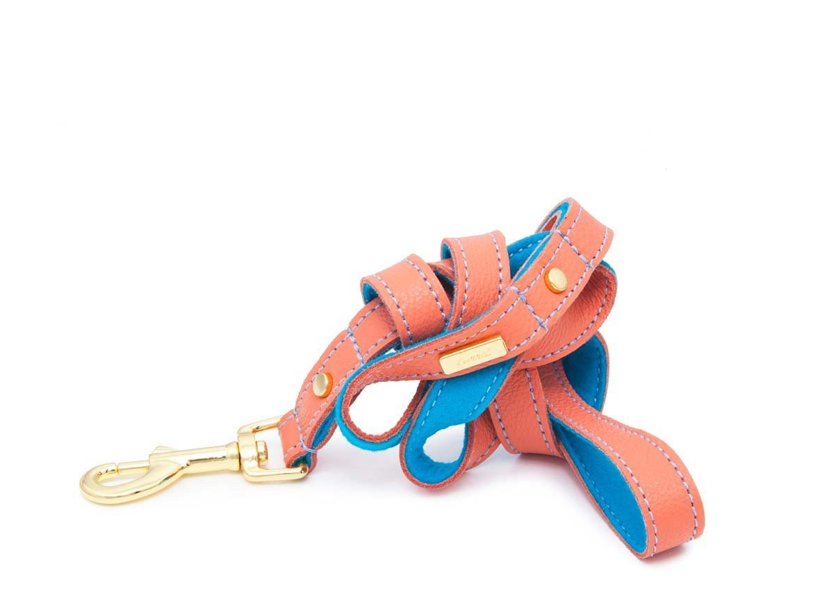 Mandarin Soft Leather Dog Leash with Soft Wool Lining