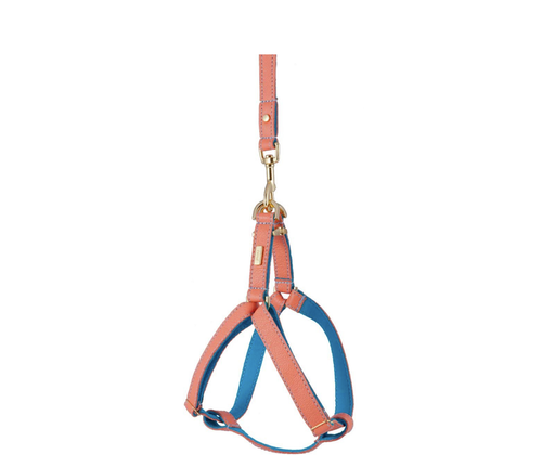 Mandarin Soft Leather Dog Harness with Wool Felt Lining