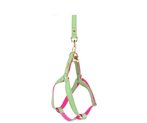 Mint Soft Leather Dog Harness with Wool Felt Lining
