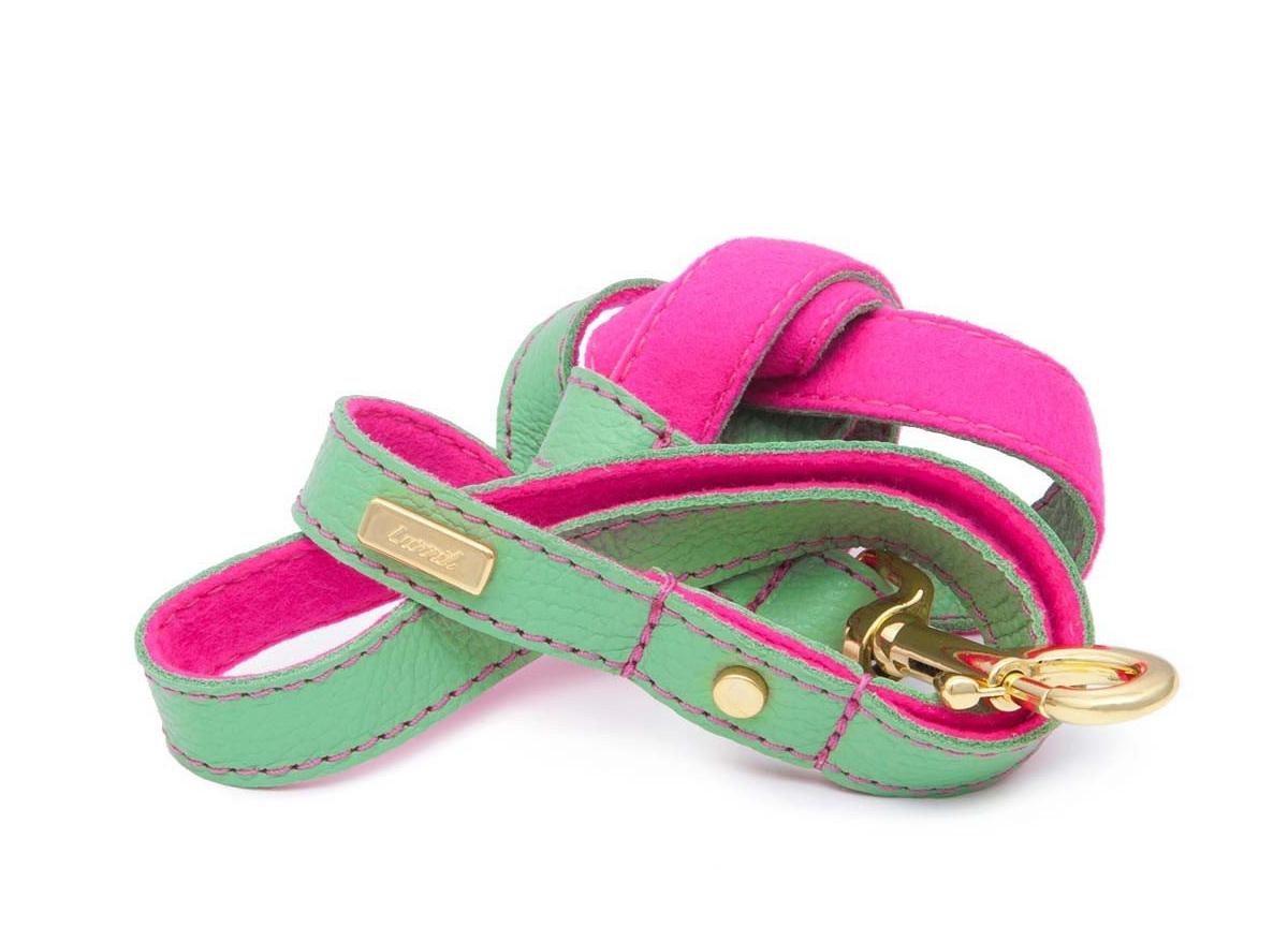 Mint Soft Leather Dog Leash with Soft Wool Lining