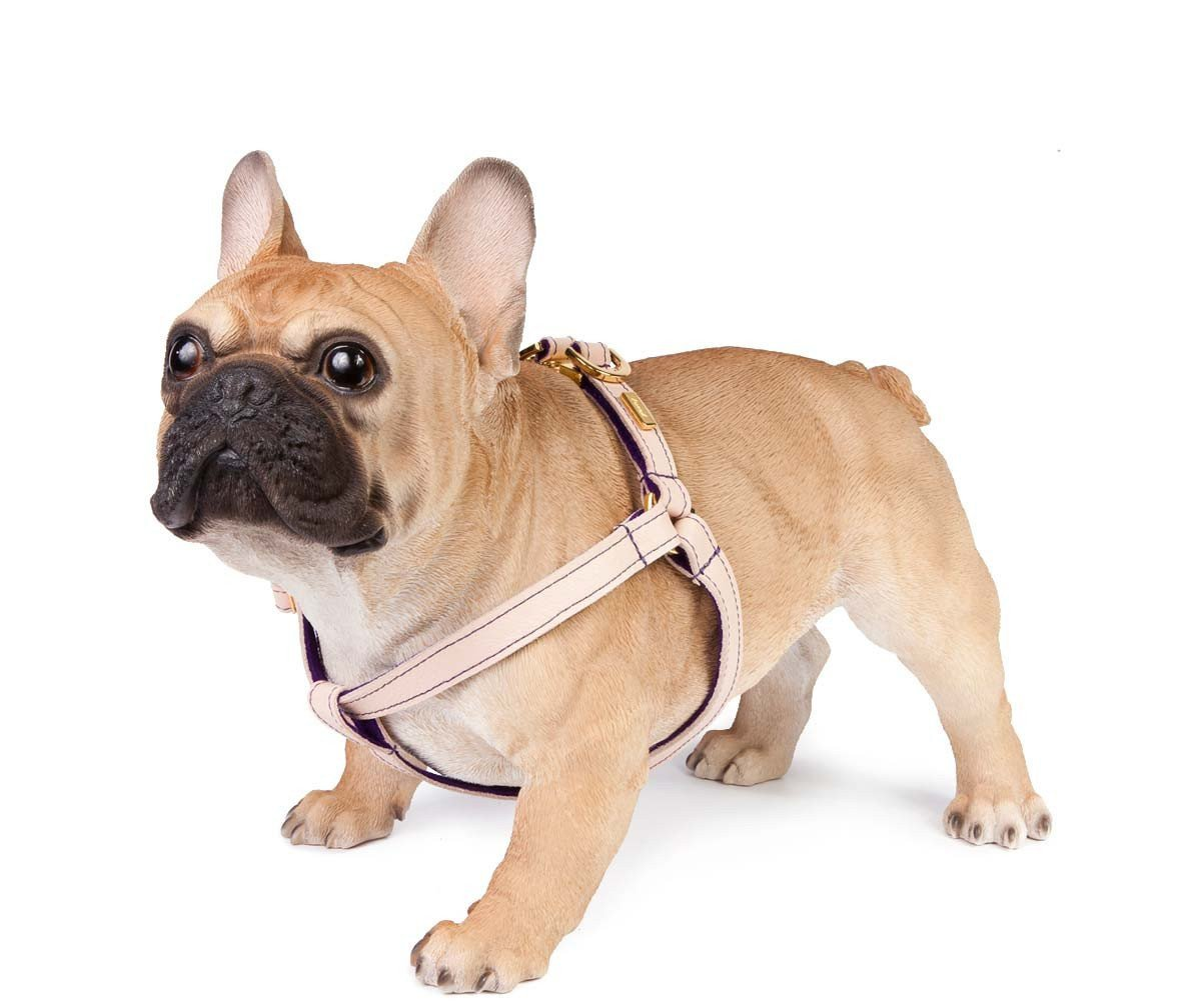 Nude Soft Leather Dog Harness with Wool Felt Lining