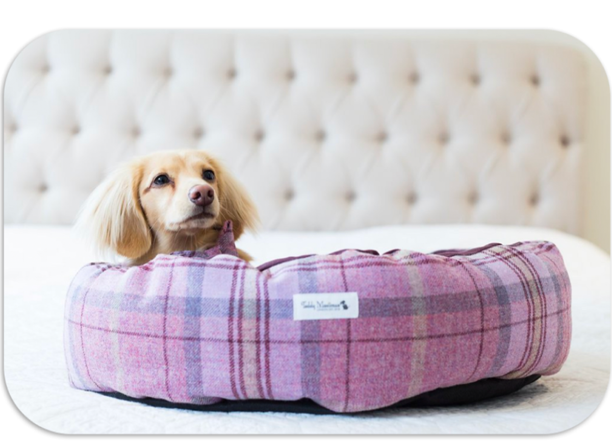 mama dog wool shetland pink products p bed puppy cocoon
