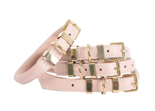 'The Rose' Pink Dog Leash