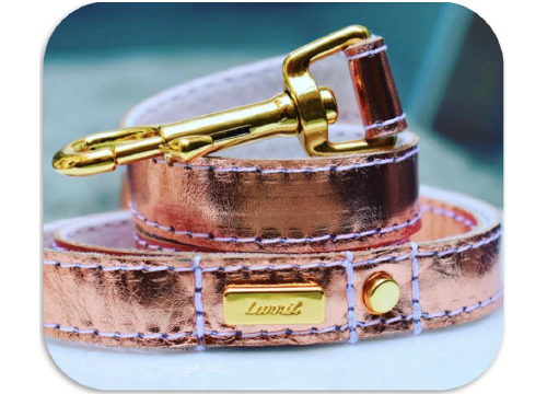 Rose Gold Dog Collar, Leash & Harness (buy together or separately)
