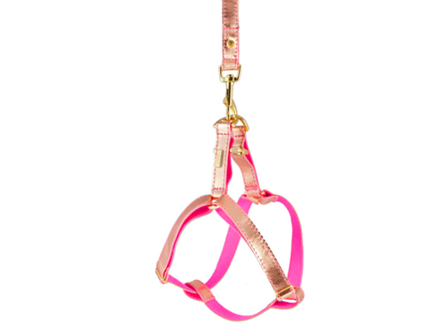 Rose Gold Leather Harness