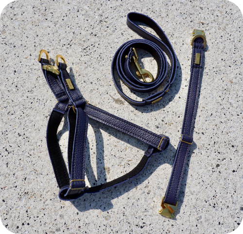 Navy Blue Dog Collar, Leash & Harness (buy together or separately)