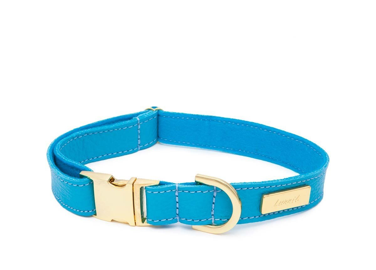 Dog Collar, Leash & Harness in Turquoise Blue Soft Leather