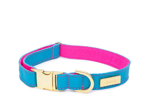 Turquoise Leather Dog Collar  - Soft, Durable Leather and Soft Wool Lining