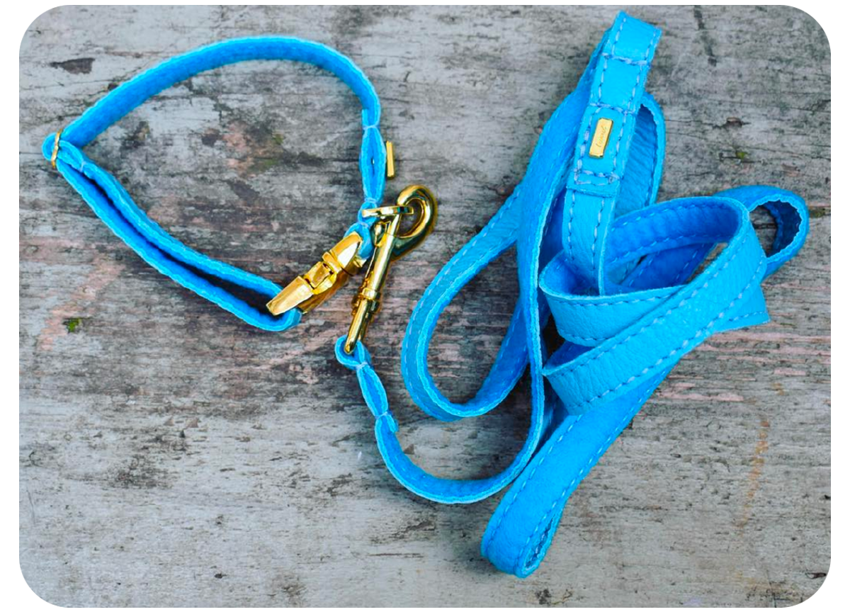 Puppy Leash: Turquoise Soft Leather