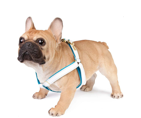 Turquoise Blue Dog Collar, Leash & Harness - Comfy, Soft Leather & Soft Wool Lining (buy together or separately)