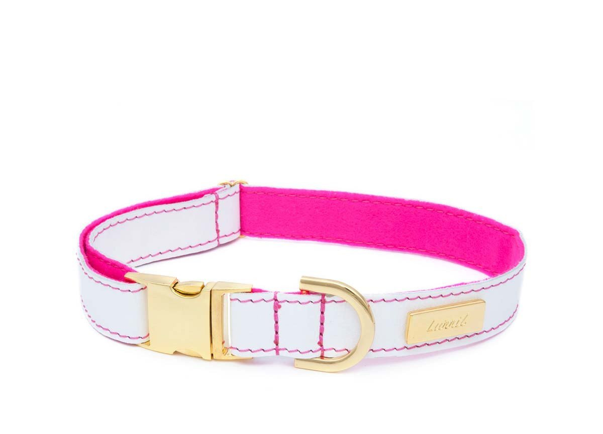 White Leather Dog Collar for your French Bulldog - Durable, Soft Leather & Soft Wool Lining