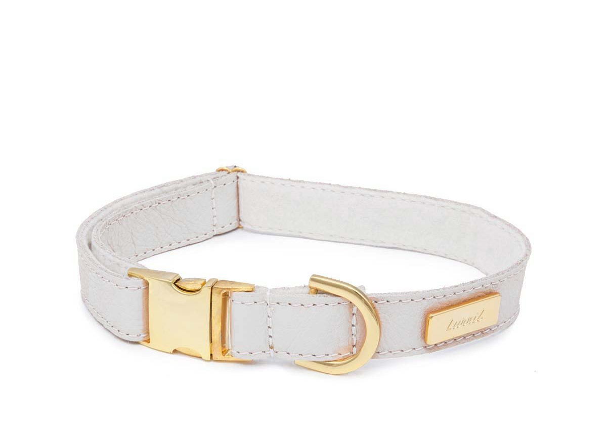 White Leather Dog Collar for your Pug - Soft Leather & Soft Wool Lining