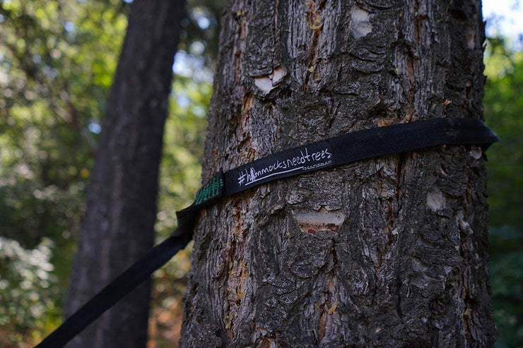 Madera Outdoor Loyalty Program Seed Points Heavy Duty Hammock Straps (2 Straps)